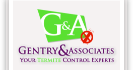 termite tenting dangers pest termite fumigation tenting health risks gentry